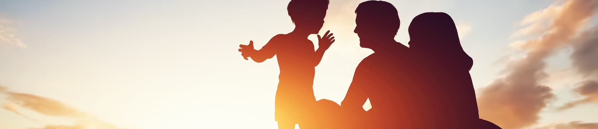 Family trusts: will they survive?