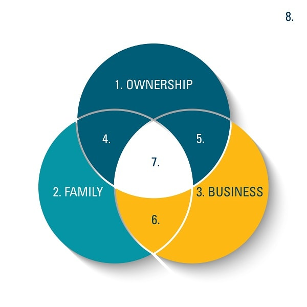 Family-Business-Dynamics